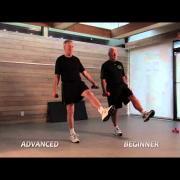 One-Leg Balancer